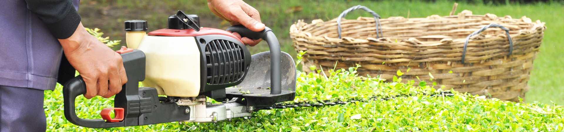 groendienst bij maatwerkbedrijf AMAB