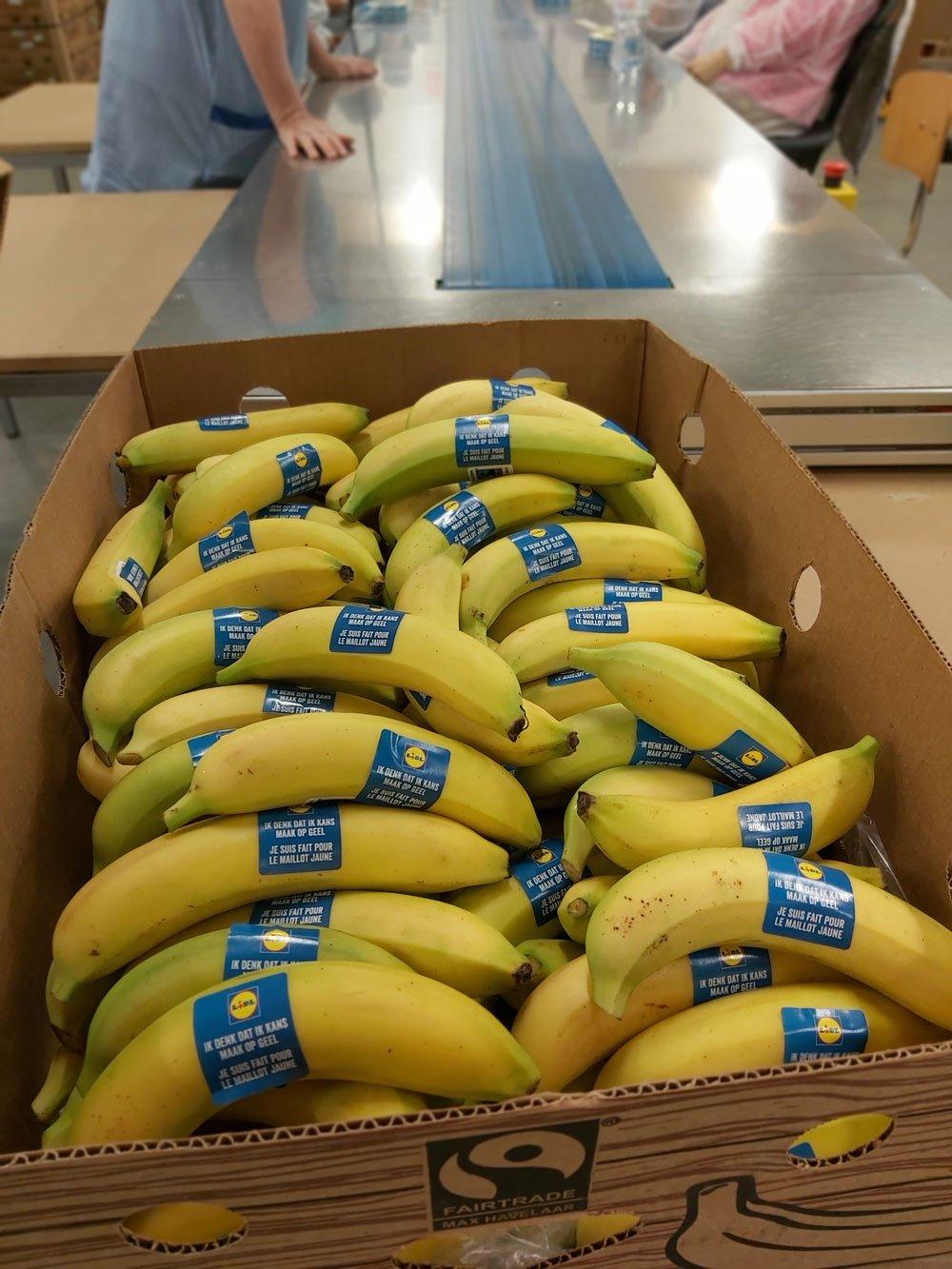 verpakken bananen