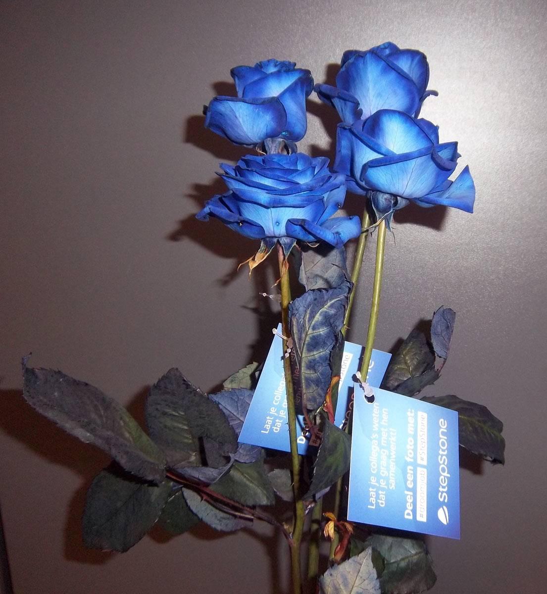 verpakken op maat blauwe rozen